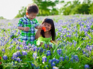 Frisco Bluebonnets Children Portrait Photography