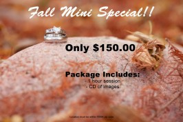 Fall Mini Special Portrait Session wedding rings Plano Texas Photographer