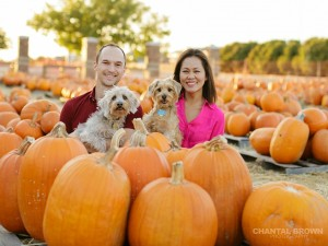 Dallas family pet puppies annual pumpkin patch portrait taken by Chantal Brown Photography in Murphy, Texas